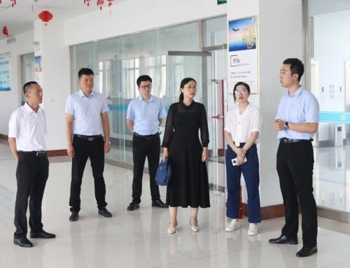 Warmly Welcome The Leaders Of Jining Municipal Bureau Of Commerce To Visit BST Group